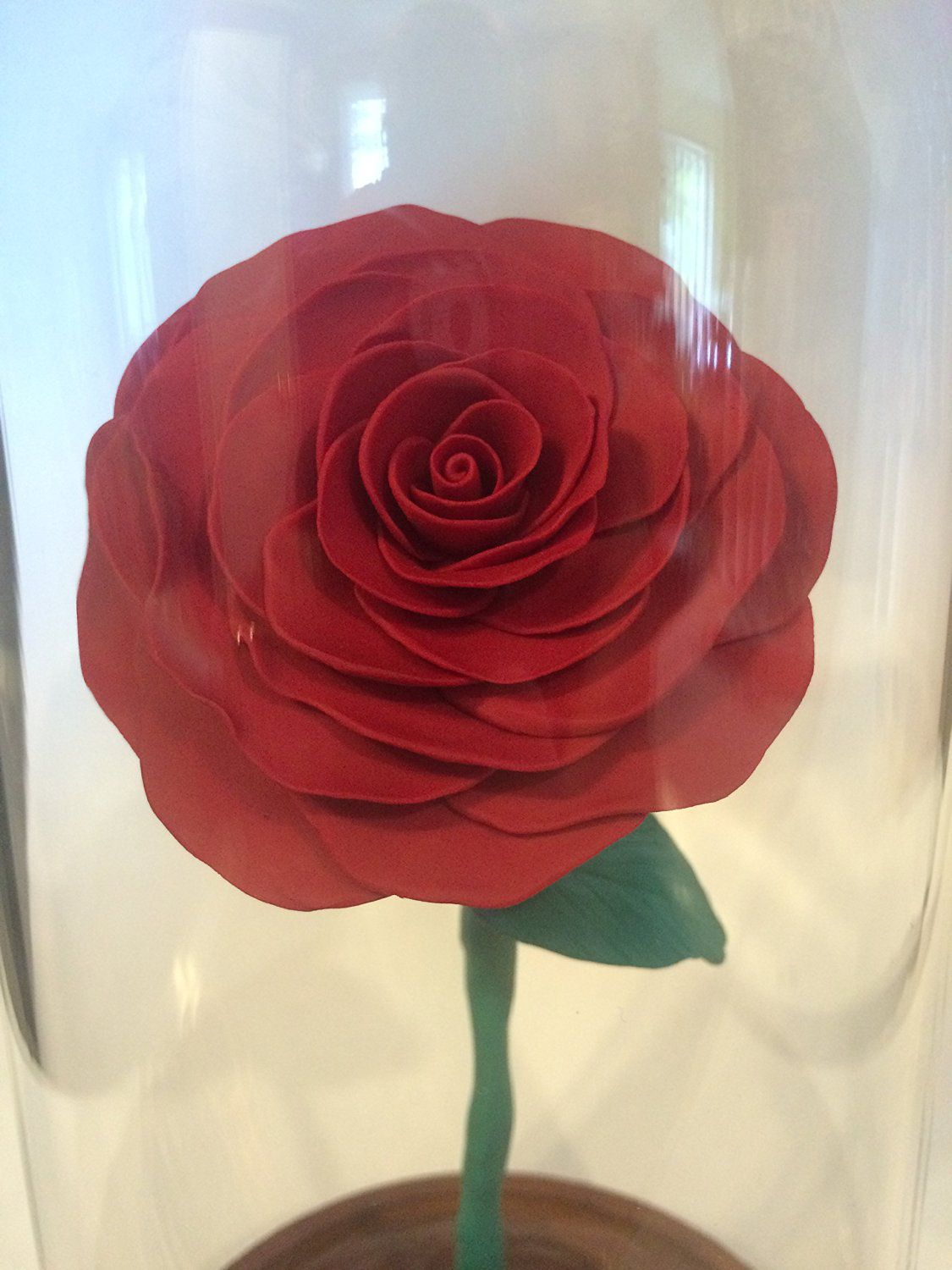 Beauty and the Beast Rose, Red Rose, Enchanted Rose, Rose in a large dome, Rose in Glass