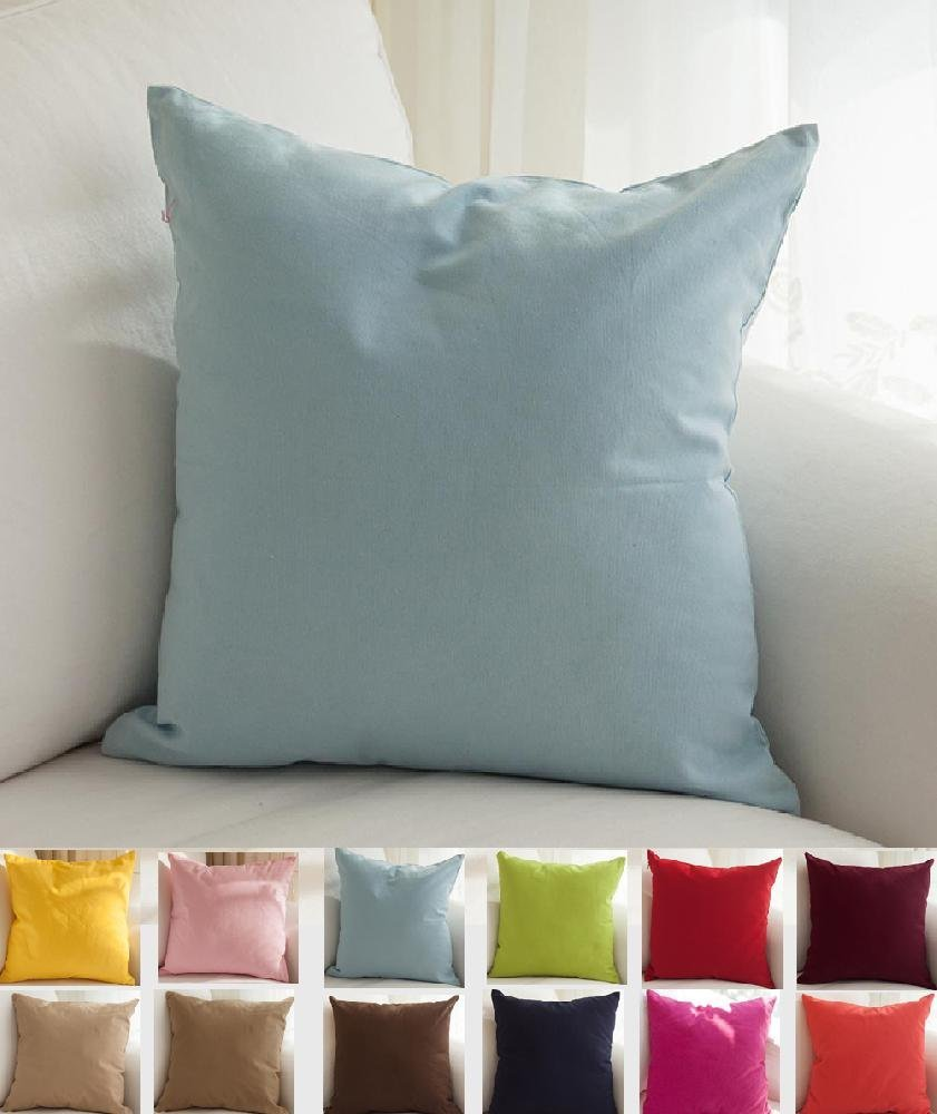 Throw Pillow Decorating Ideas : Decorating Sofa with Light Blue Throw Pillows Decor on The Line
