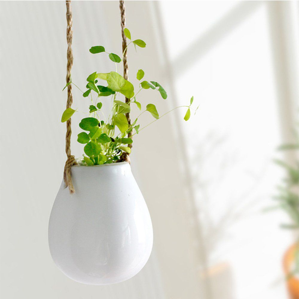 Advantages of Having Indoor Hanging Planters | Decor on The Line