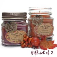 Fall Scented Jar Candles Gift Set of 2 -Natural Soy Wax Blend - Autumn Fragrances of Spicy Pumpkin and Sassy Sangria- Fragrant, Long Lasting 40+ Hrs. each -Best Scented Candles for Fall Home Decor