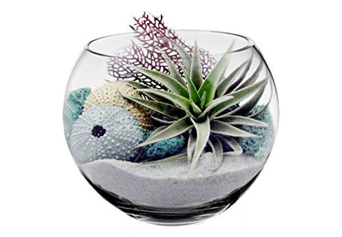 CYS® Glass Bubble Bowl, Fish Bowl Hand Blown Glass Vase, Body D-8""
