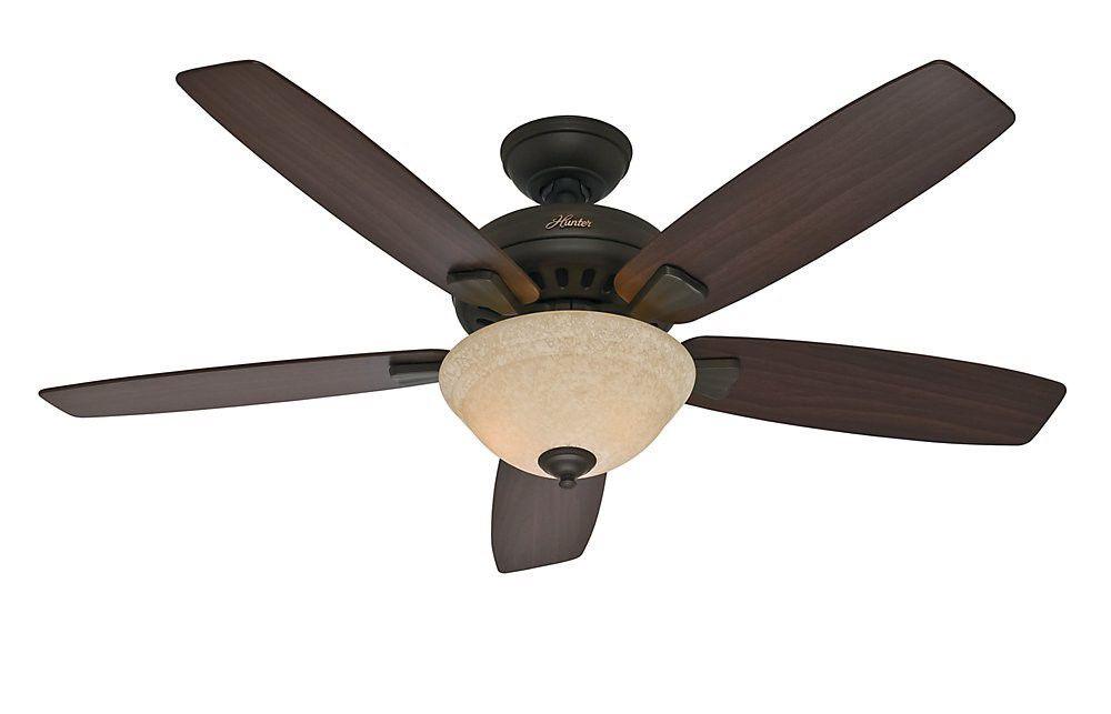 Hunter Fan Company 53176 Banyan 52-Inch Ceiling Fan, New Bronze