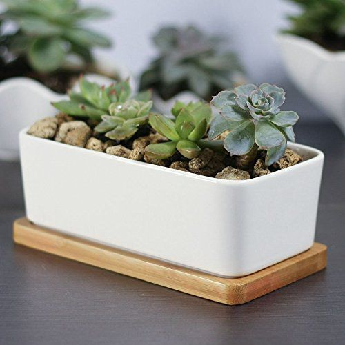 Mkono Small Ceramic Plant Pot White Succulent Planter -- Rectangular