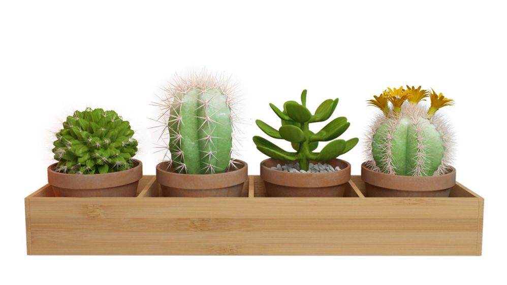 Rectangular Wooden (Bamboo) Window Planter Box / Four-sectioned Tray for Succulents, Herbs And Flowers