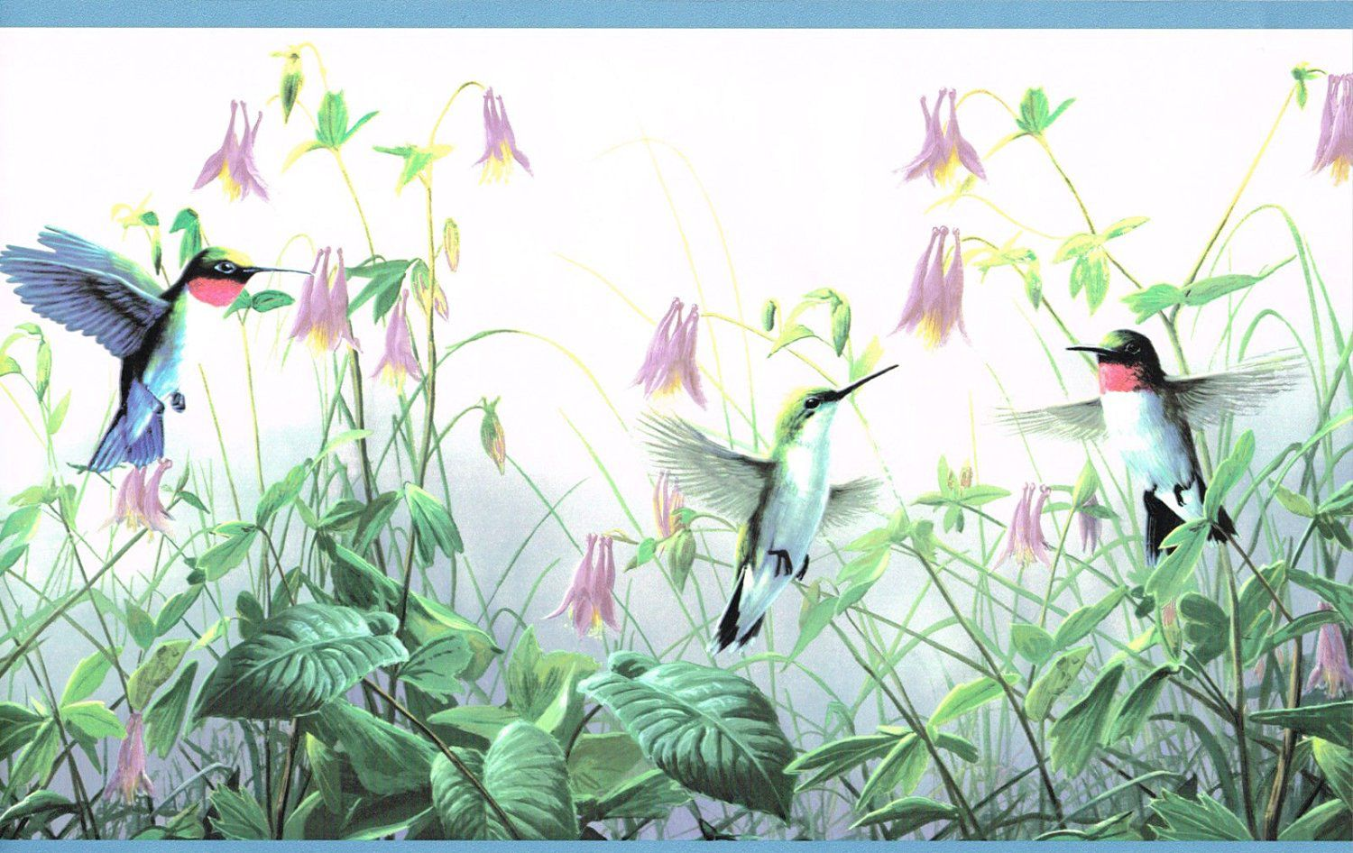 Wallpaper Border Floral Hummingbirds with Blue Edge By James Hautman Brothers