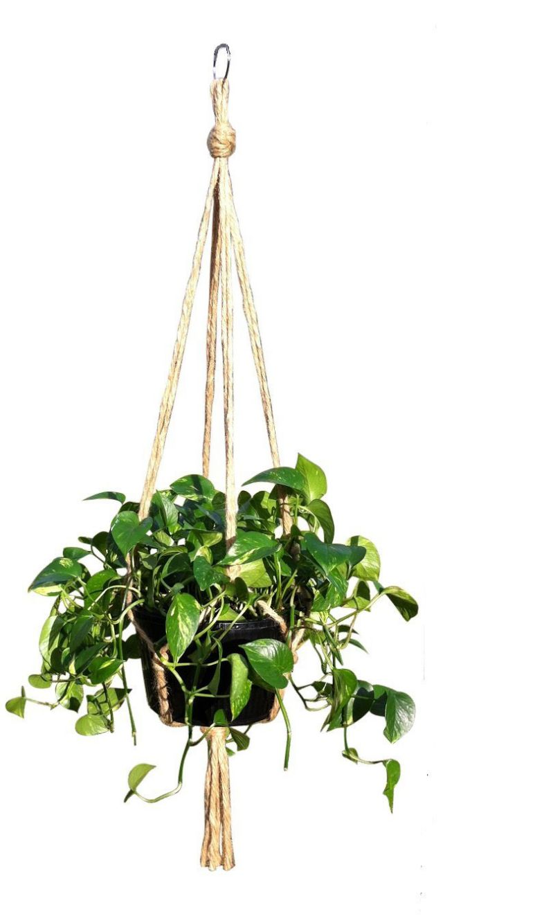Hanging Basket Plant Hanger Holders Large for Indoor and Outdoor Jute Rope 48 Inch