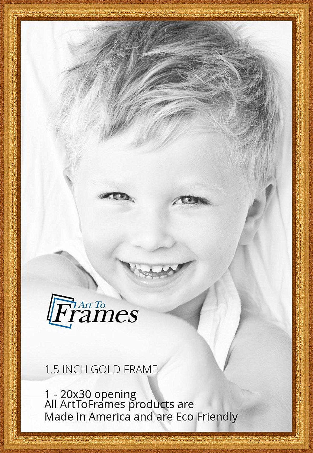 ArtToFrames 20x30 inch Gold Speckeled Wood Picture Frame, WOMTI-795-20x30