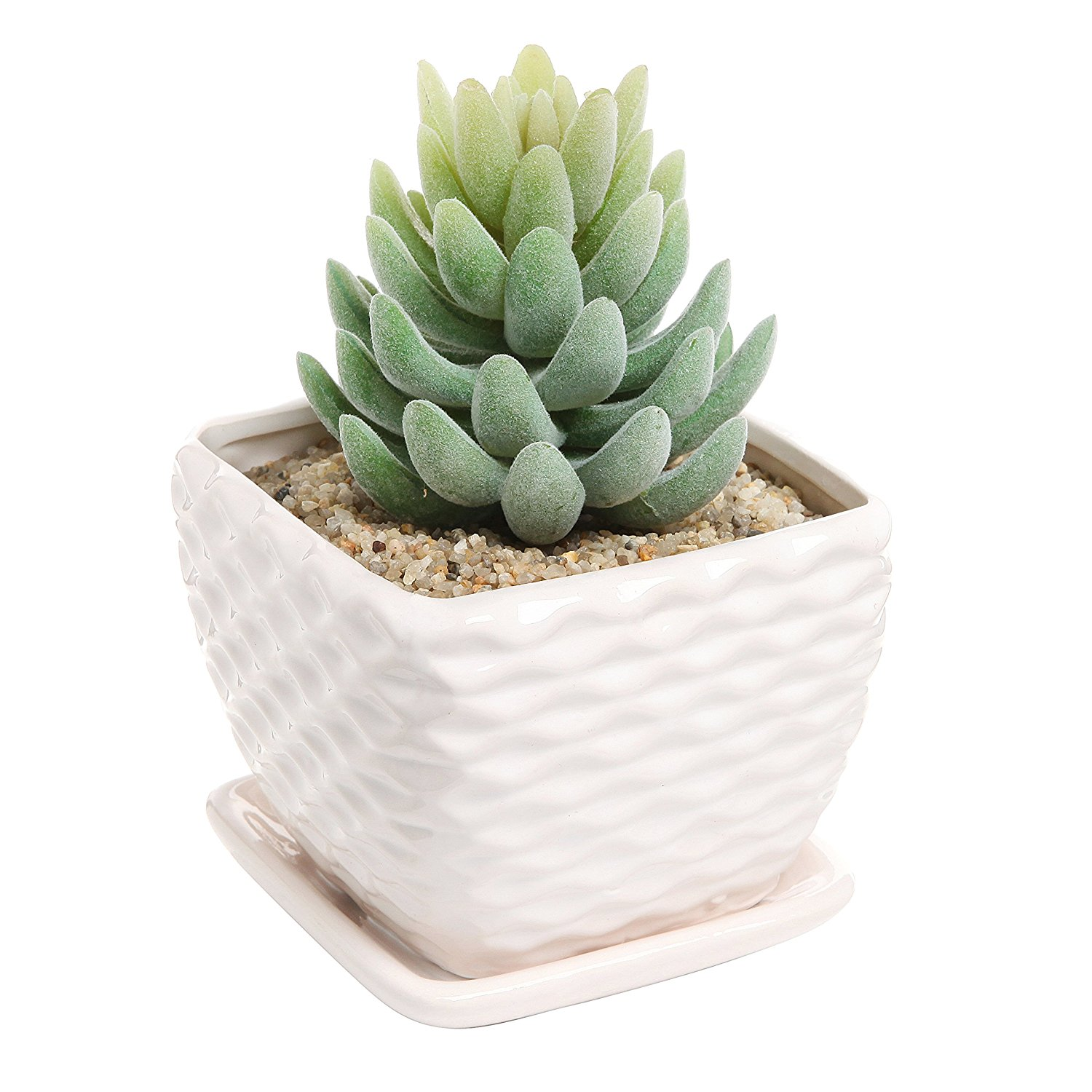 Contemporary White Ceramic Succulent Planter Flower Pot w/ Decorative Wavy Coil Design & Drainage Plate